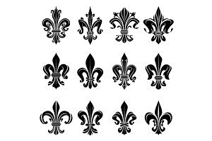 Royal french lily flowers symbols
