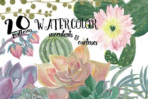 Watercolor succulents and cactuses