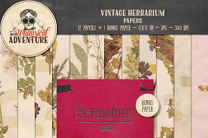 Vintage Herbarium Papers
