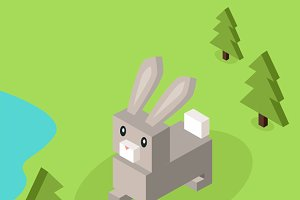Wild Animal Hare, Rabbit Isometric