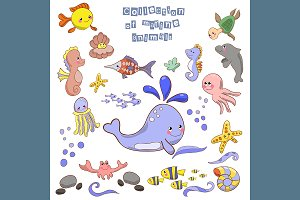 №121 Marine animals and fish
