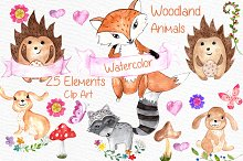 Watercolor woodland animals clipart