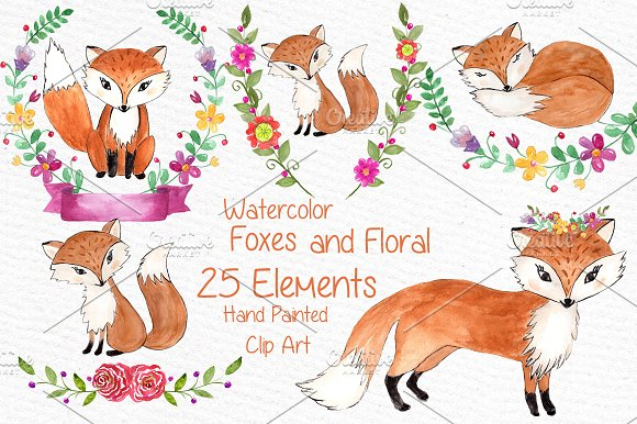watercolor fox clipart illustrations creative market