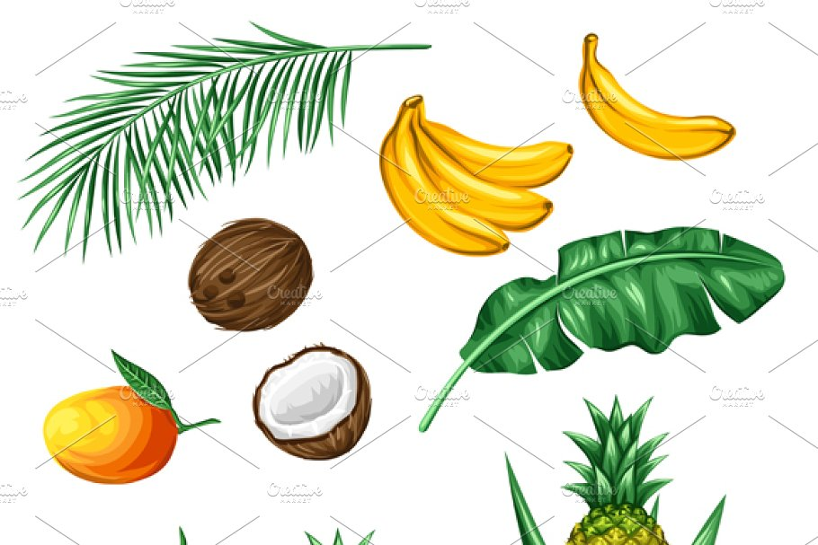 Set of tropical fruits and leaves.