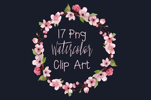 17 Watercolor Cherry Blossom ClipArt