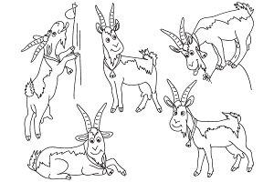 Goats Sets