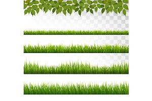Several Grass Borders. Vector