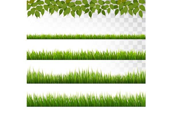 Several Grass Borders. Vector