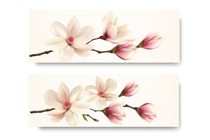 Two magnolia banners