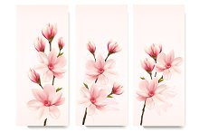 Set of flower magnolia banners