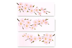 Three flowers nature banners