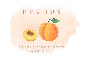 Prunus Fruits Watercolor Pack