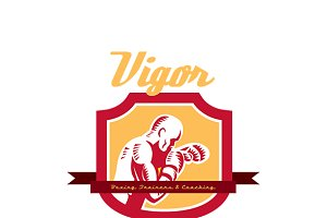 Vigor Boxing Training and Coaching L