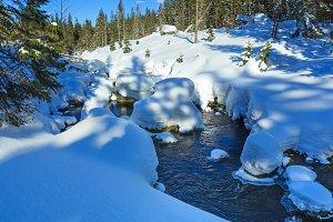 Small winter mountain stream