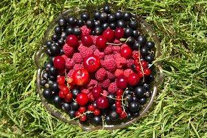 cherry currants raspberries