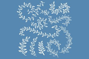 set of hand drawn vector leaves