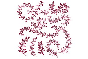 Hand painted vinous branches, leaves