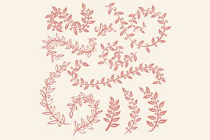 Set of leaves vector on pink