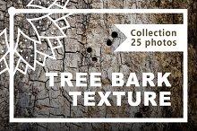 Set of textures tree bark