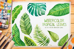 Tropical leaves. Watercolor vector.
