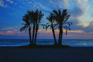 Idyllic view on beach