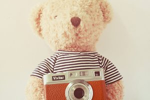 Teddy bear with retro camera