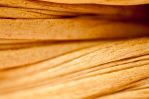 Bambu essence