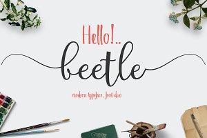 beetle (fontduo)