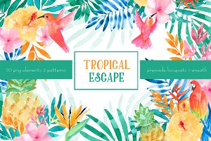 Tropical escape