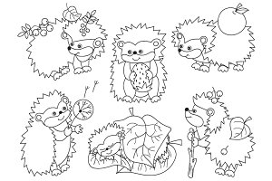 Forest Hedgehogs