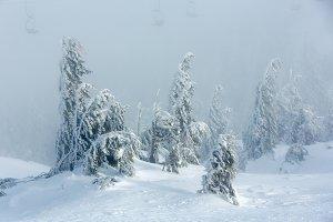 Winter mountain misty view.