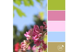 Summer Pastel Color Palette