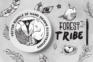 Vector Bundle Forest Tribe