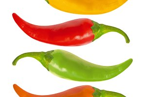 Multicolor hot chili peppers