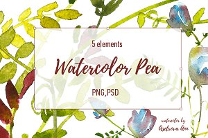 Watercolor Pea Set