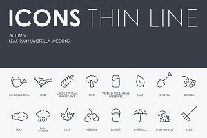 Autumn thinline icons