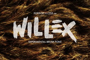 Willex Brush Font