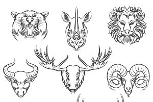 Wild animals hand drawn heads