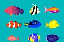 Set of Sea Fish Color Design Flat