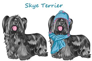 Dog Skye Terrier SET