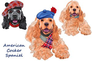 American Cocker Spaniel SET