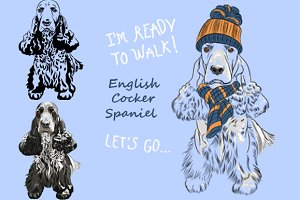 dog English Cocker Spaniel SET