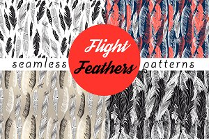Beautiful seamless patterns feathers