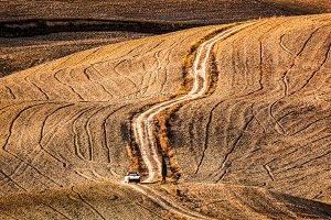 Tuscany fields landscape.