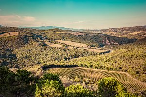 Tuscany landscape, aerial view.