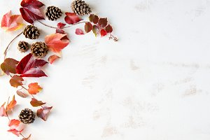 Fall Autumn Leaves and Pine Cones