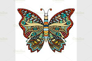 Hand drawn beautiful butterfly.