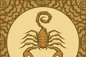 Scorpion logo icon