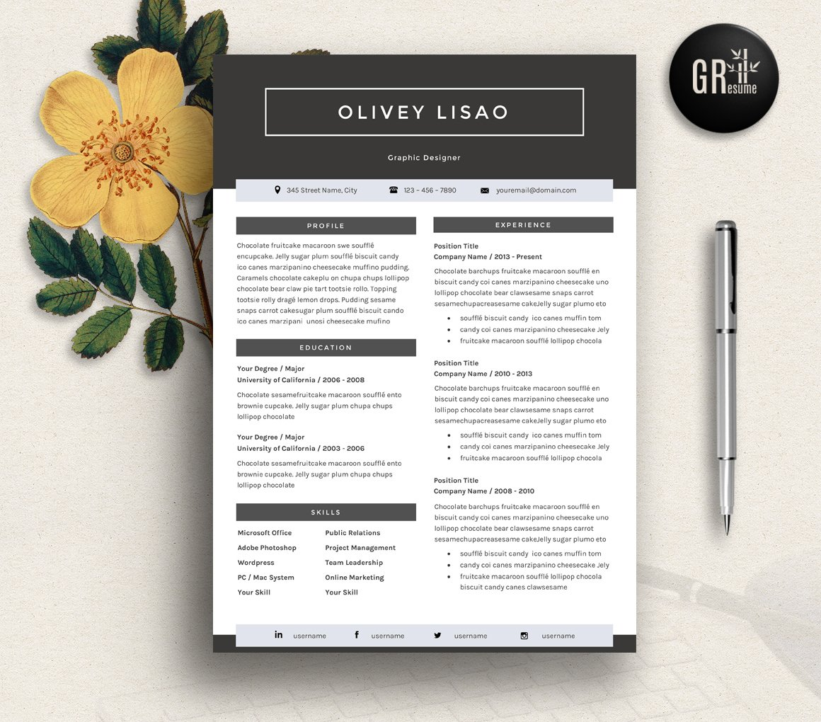 professional resume cv template resume templates creative market