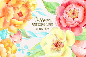 Watercolor Clipart Peony Passion